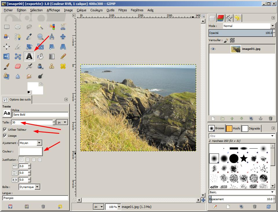 Watermark Et Tatouage Sur Image Photo Calque Tutoriels Et Exemples Gimp